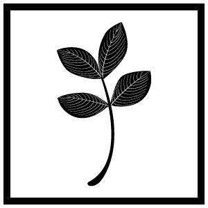 pbj_logo