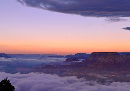 Image courtesy of Grand Canyon National Park on Flickr