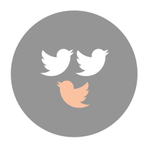 LayoutGraphics_7. Make your tweets stand out.-