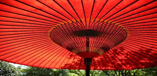 social-umbrella